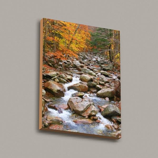 Brook in Fall