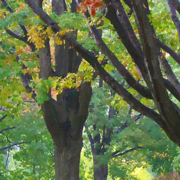 Fall Trees - detail - 600