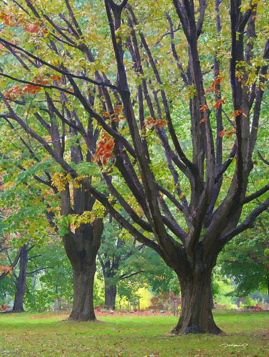 Fall Trees - p5-1022-4123-art-wsig-700
