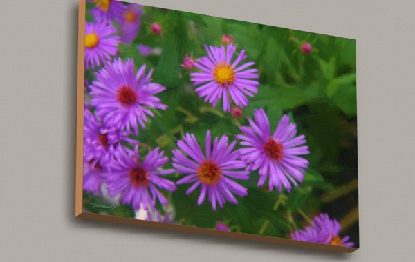 Flowers Study #3