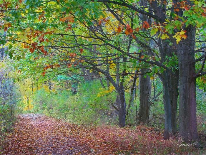 p5-1029- Fall Hike 4163-art-wsig-700