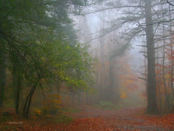 p6-1012 - Fall Fog - 9894 - art - wsig - 700