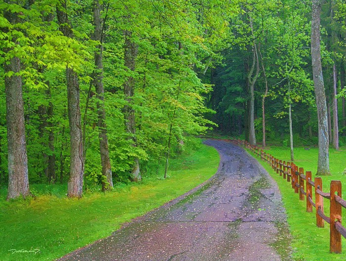 p8-0511 - Spring Country Road - 9991 - art - wsig - 700